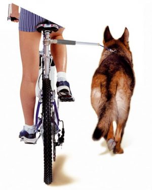 Camon walky dog fietsbeugel (60X3X3 CM)