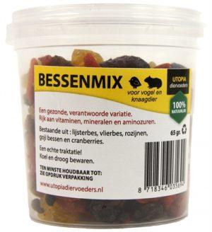 Bessenmix (65 GR)