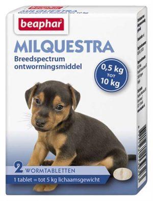 Beaphar milquestra kleine hond / pup (2 TBL)