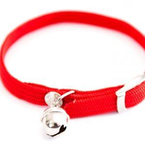 Halsband kat elastisch nylon rood (30X1 CM)
