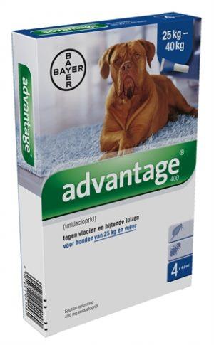 Bayer advantage hond 4 pipetten (400 25+ KG 4 PIP)