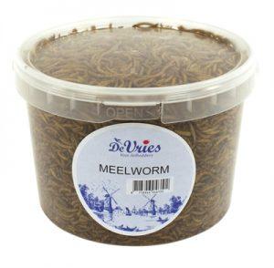 De vries meelworm (370 GR)