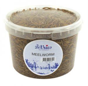 De vries meelworm (75 GR)