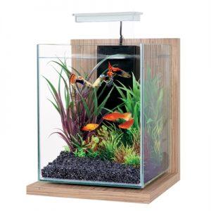Zolux aquarium kit jalaya bamboo beige (22X23X34,5CM 9,3 LTR)
