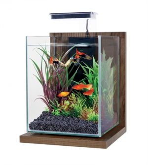 Zolux aquarium kit jalaya walnut bruin (22X23X34,5CM 9,3 LTR)