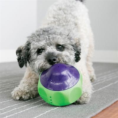 goedkoop hondenspeelgoed