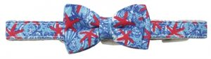 Croci halsband hond reef print blauw / rood (40X2 CM)