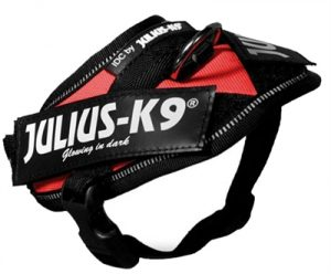 Julius k9 power-harnas/tuig voor labels rood (BABY 1/30-37 CM)